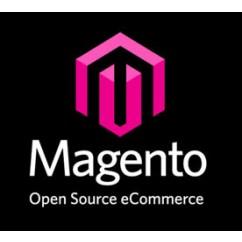 Pack E-commerce Magento